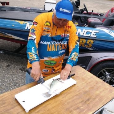 TWO WAY Fillet used by Crappie Dan